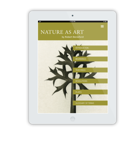 NatureAsArt iPad Flat Mockup 10
