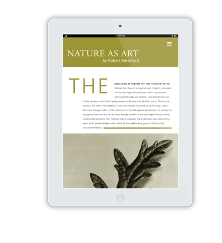 NatureAsArt iPad Flat Mockup 11