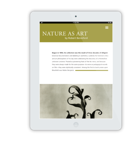 NatureAsArt iPad Flat Mockup 12