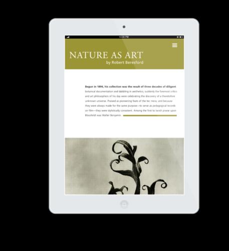 NatureAsArt iPad Flat Mockup 12