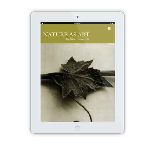 NatureAsArt iPad Flat Mockup 13
