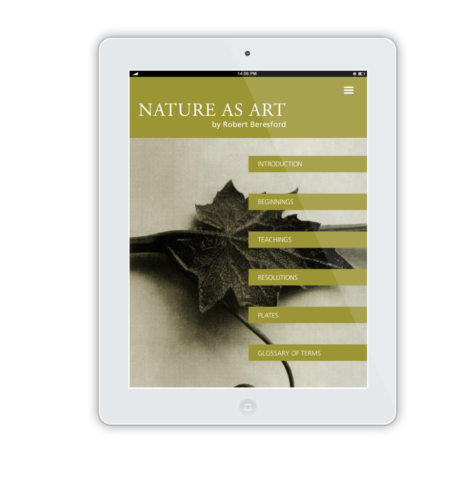 NatureAsArt iPad Flat Mockup 14