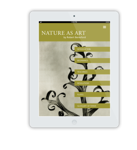 NatureAsArt-iPad-Flat-Mockup-15