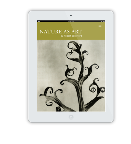 NatureAsArt iPad Flat Mockup 2