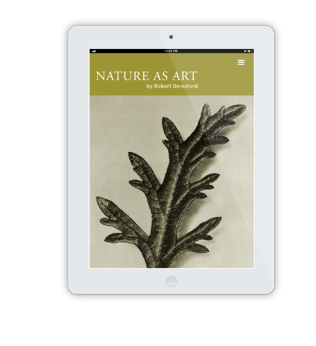 NatureAsArt iPad Flat Mockup 7 1