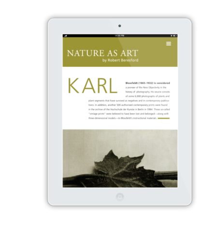 NatureAsArt iPad Flat Mockup